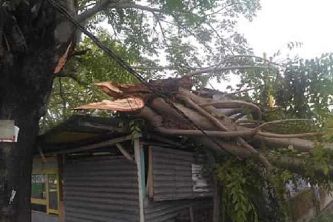 BPBD Kota Parepare Siap 24 Jam Antisipasi Angin Kencang